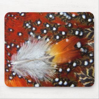 Tragopan fait varier le pas de la vie immobile tapis de souris