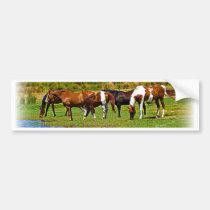 Troupeau de chevaux adhésif pour voiture
