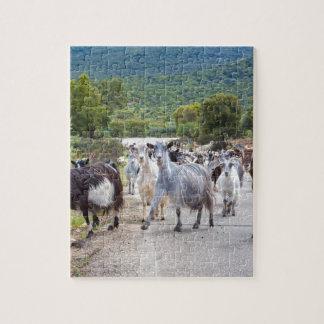 Troupeau de chèvres de montagne marchant sur la puzzle