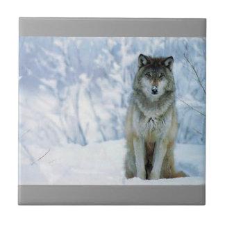 Tuile de loup carreaux