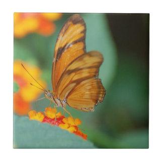 Tuile orange minuscule de papillon carreau