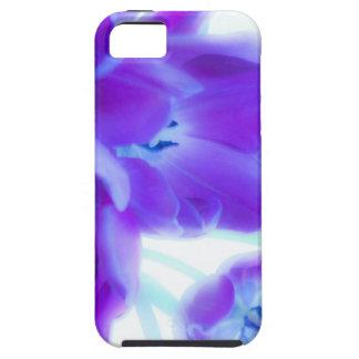 Tulipes colorées, girly, romantiques, pourpres coques iPhone 5