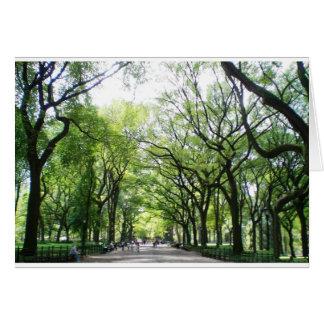 Tunnel d'arbre de Central Park de NYC Carte De Vœux
