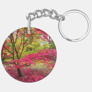 Un arbre d'érable japonais à l'arborétum de porte-clé rond en acrylique double face