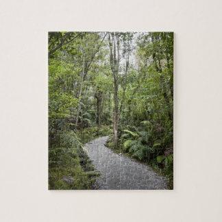 Un chemin à travers une forêt tropicale à la base puzzle