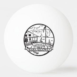 Une boule de ping-pong de parc de Smith ! Balle Tennis De Table