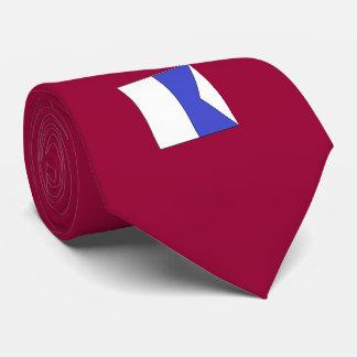 Une cravate d'hommes nautiques de drapeau lettre