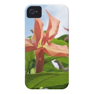 Une fleur coque iPhone 4 Case-Mate