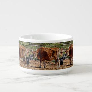 Vache à Brown dans le bol de piment de briques