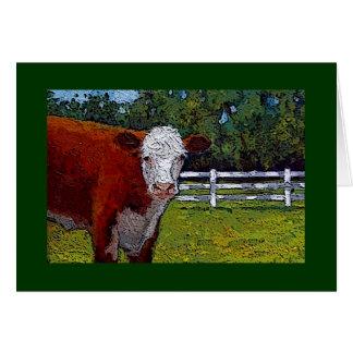 Vache à Hereford dans le pâturage : Illustration : Carte
