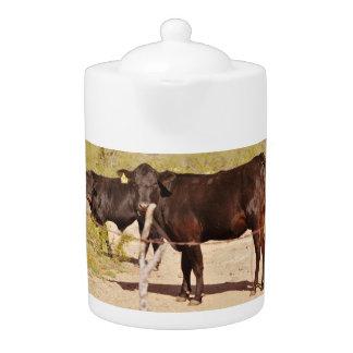 Vaches à Brown dans le pot de thé de chrome