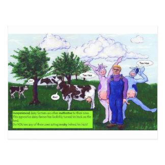 Vaches avec le nouvel agriculteur carte postale