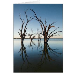 Vallée de l'Australie, le fleuve Murray, Barmera, Carte De Vœux