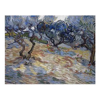 Van het Fijne Art. Gogh van Olijfbomen (F714) Wens Kaart