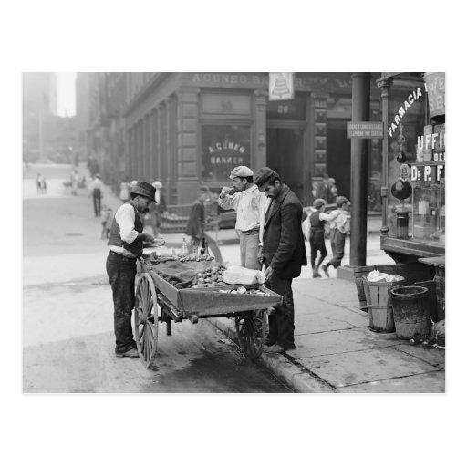 Vendeur de palourde en peu d'Italie, 1906 Carte Postale
