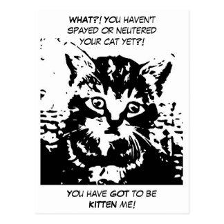 Vente personnalisable pour le bureau vétérinaire cartes postales