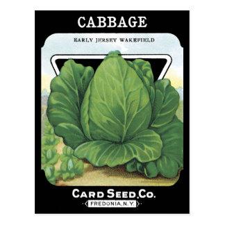 Vert feuillu végétal de paquet vintage de graine carte postale