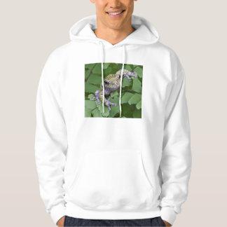 Veste À Capuche Grenouille d'arbre grise sur la fougère, Canada