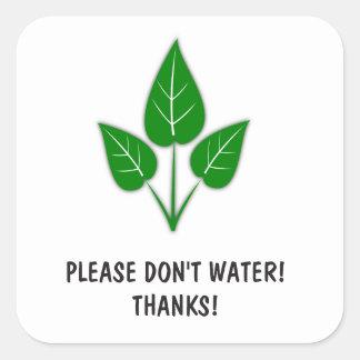 Veuillez ne pas arroser les autocollants - plantes