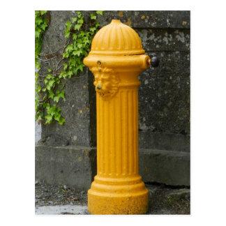 Vieille pompe à eau Athenry - en Irlande Carte Postale