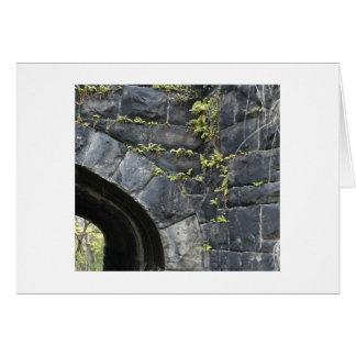 Vieux tunnel à Highland Park Carte De Vœux