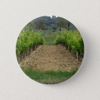 Vignoble au printemps. La Toscane, Italie Badge Rond 5 Cm