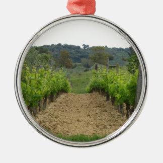 Vignoble au printemps. La Toscane, Italie Ornement Rond Argenté