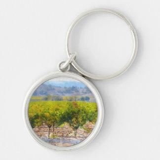 Vignoble dans Napa Valley la Californie Porte-clés