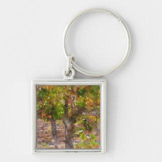 Vignoble dans Napa Valley pendant l'automne Porte-clés