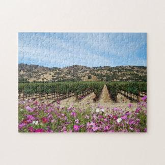 Vignoble de Napa Valley au temps de récolte avec Puzzle