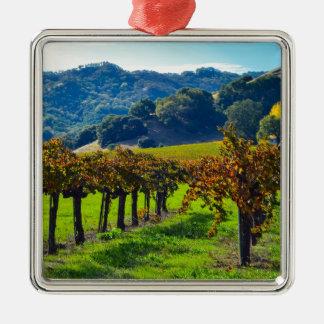 Vignoble ensoleillé d'automne ornement carré argenté