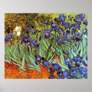 Vincent van Gogh 64