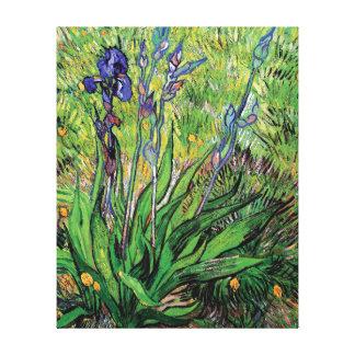 Vincent van Gogh - les beaux-arts d'amant de Toiles