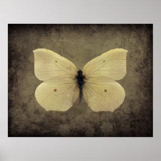 Vintage sepia vlinderposter poster