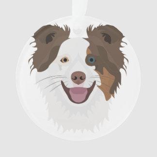 Visage heureux border collie de chiens