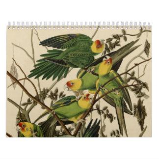 Vogels van Amerika Kalender