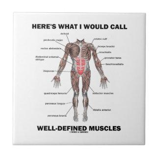 Voici ce que j'appellerais les muscles bien carreau