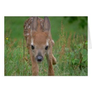 Voici venir la carte de Bambi