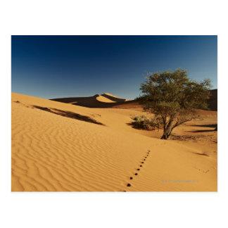 cartes postales de paysage sur Zazzle