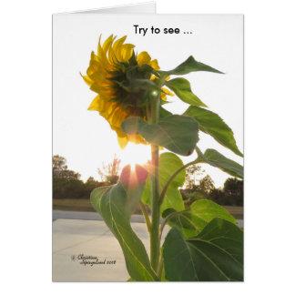 Voir les fleurs de soleil par la carte de