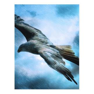 Vol d'oiseau cartes postales