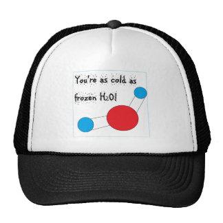 vous êtes aussi froids que h2o congelé casquettes de camionneur