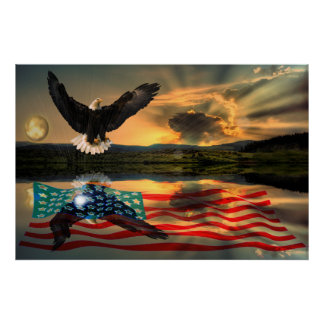 Vrijheid-Eagle-w-vlag-w-ster-uitbarsting-2010 Poster