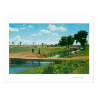 Vue de golfeur frappant la boule carte postale