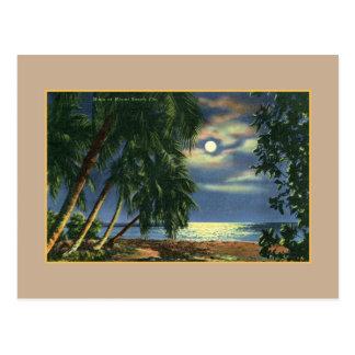 Vue vintage Miami Beach de plage de clair de lune Cartes Postales