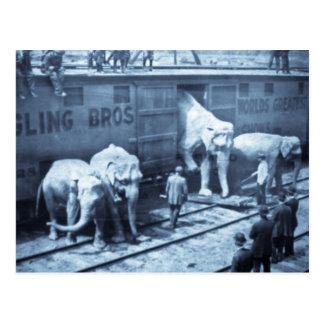 Wagon de chemin de fer vintage de Ringling Cartes Postales