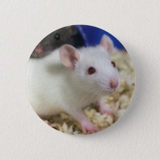 Weinig rat ronde button 5,7 cm