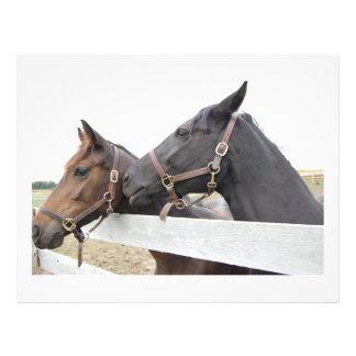 Whisperer original de cheval prospectus 21,6 cm x 24,94 cm