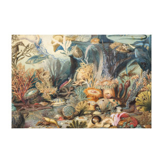 Wijnoogst onder Zee | de Druk van het Canvas