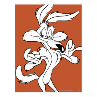 Wile E. Coyote Looking heureux Carte Postale
